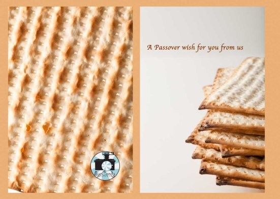 Passover_brown8