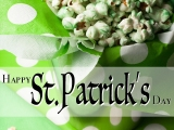 Happy St. Patrick's Day from EyeCandyTO